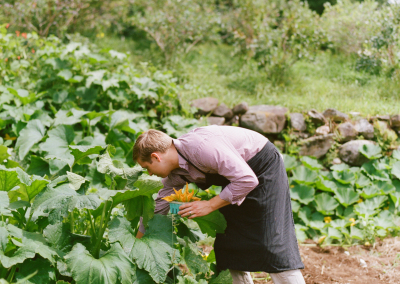 Charlie in squash patch